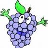 Vinogradinka