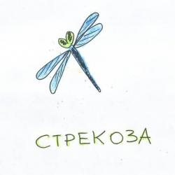 CTREKOZZZA